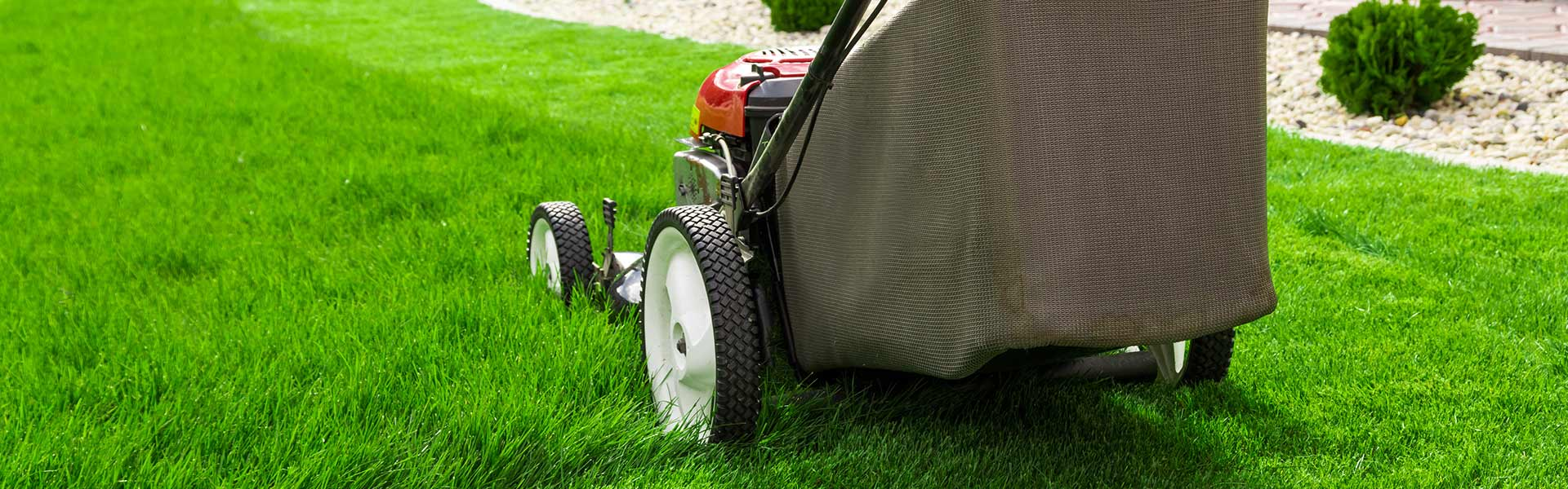 Web design and marketing for lawn maintenance companies.