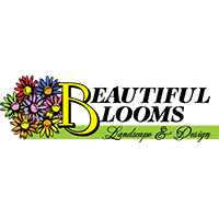 Beautiful Blooms Landscape & Design in Brookfield, WI