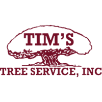 Tim's Tree Service in Cape Coral, FL